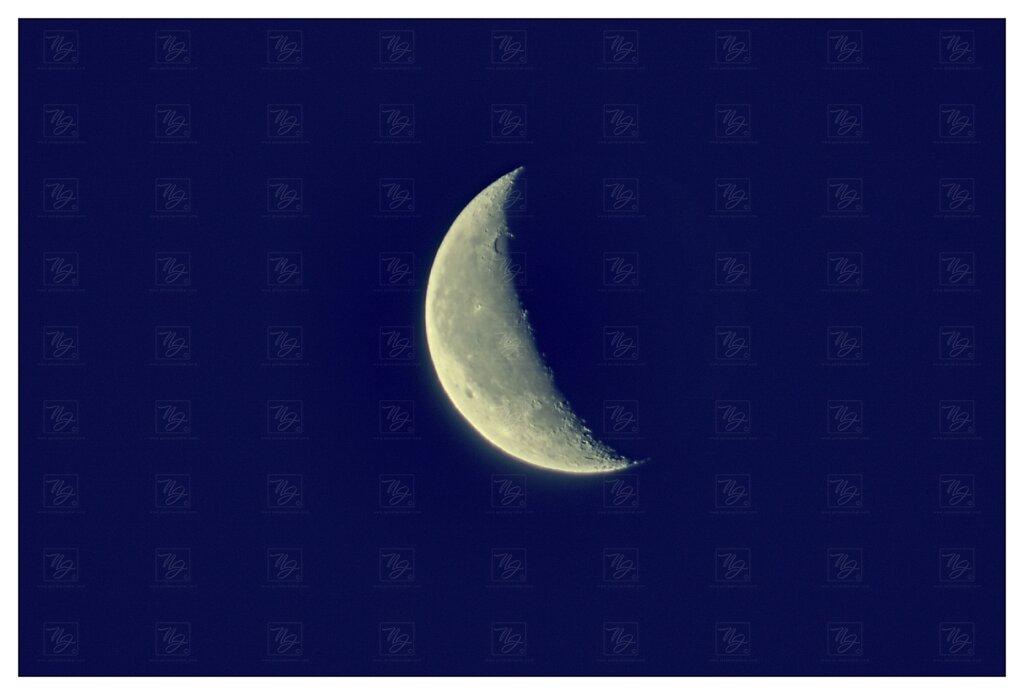 IMGP7871-1-mesic.jpg